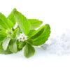 Stevia Blanc